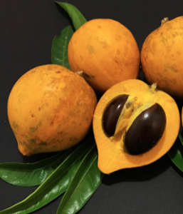 Egg-Fruit-Conscious-Maui-Hawaii-Groceries-Vegan