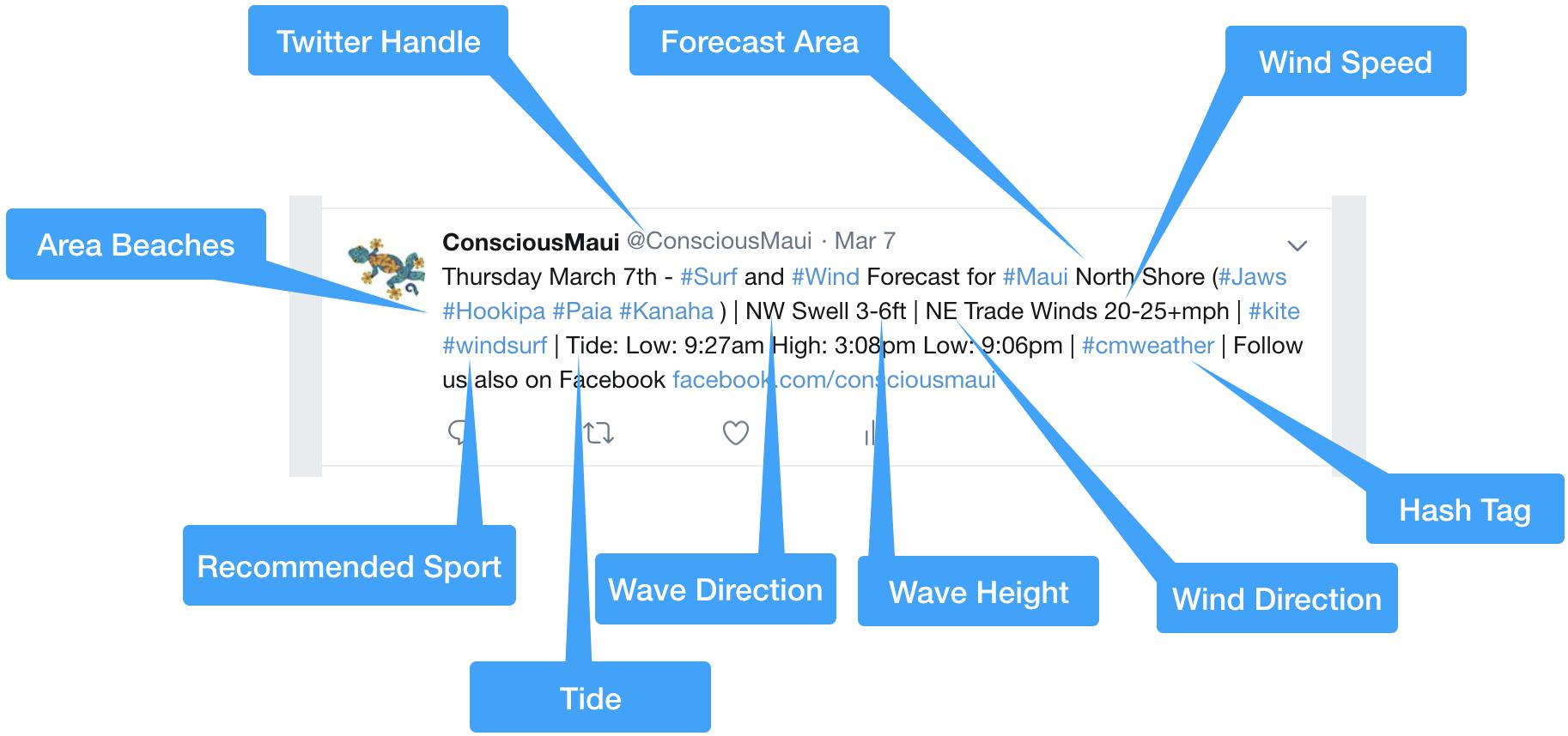 maui-surf-weather-explained